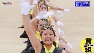女子校 応援団 日本一笑顔の佐賀女子 2018 体育祭 ★応援合戦・黄組★