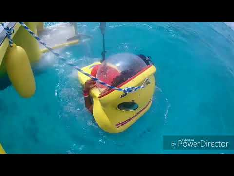 Cancun Mexico Excursions 2017