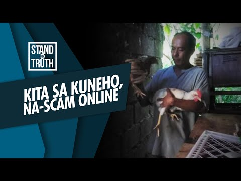 [GMA]  Stand for Truth: Kinitang pera sa kuneho, na-scam online!