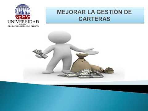 GESTION DE CARTERA DE PROYECTOS