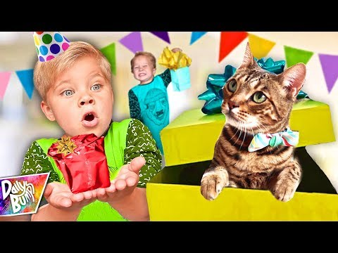 BIRTHDAY KITTEN SURPRISE! - 2nd Birthday Special