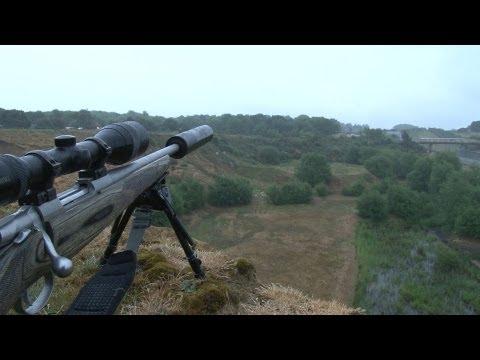 Long range daylight fox shooting