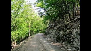 Doro - Long Way Home