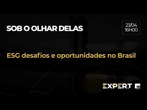 ESG desafios e oportunidades no Brasil