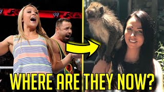 10 WWE Wrestlers That Got RELEASED: Where Are They Now?