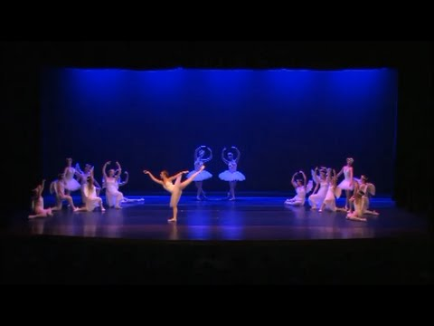 Don Quixote Act 2 (Ballet Solo)