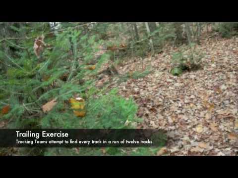Maine Primitive Skills School -