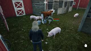 VideoImage1 Ranch Simulator