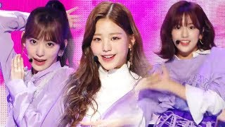 [HOT] IZ*ONE - La Vie en Rose ,  아이즈원 - 라비앙로즈 Show Music core 20181117