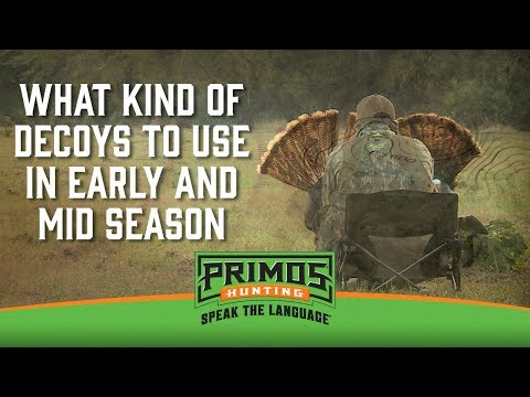 What Kind of Turkey Decoys to use in Early and Mid-Season video thumbnail