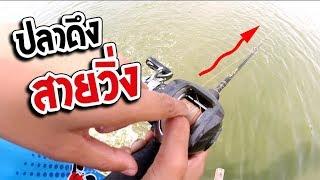 ฝึกตกปลา หนอนยาง เท็กซัสริก | เด็กตกปลา