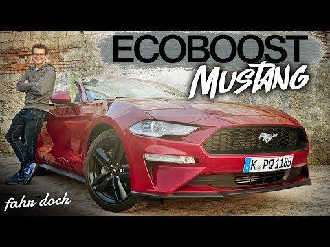 Ein echtes PONYCAR? Ford Mustang 2.3 EcoBoost Cabrio 2019 | Review und Fahrbericht