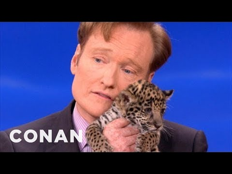 Zvířata podruhé u Conana