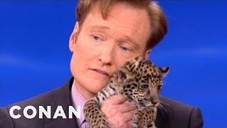 Animal Expert David Mizejewski: Baby Jaguars & Binturong - CONAN on TBS