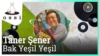 Taner Şener / Bak Yeşil Yeşil