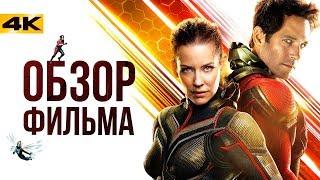 """Мстители 3.5 - обзор фильма """"Человек-Муравей и Оса"""""""