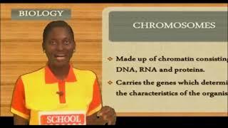 SCHOOL ON AIR:   BIOLOGY