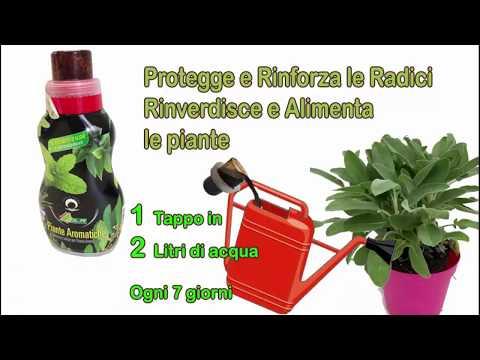 Per prevenzione da vermi che spendere su bevanda