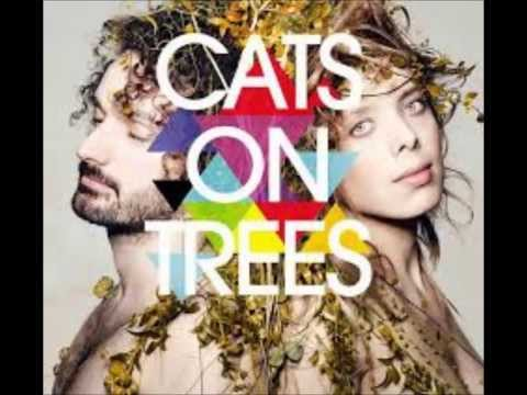 Cats On Trees - Jimmy Mp3
