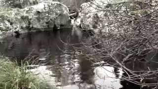 Video del alojamiento El Zaguán de Cabanillas