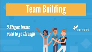 5 Stages of Team Building - What you should know when developing teams or groups