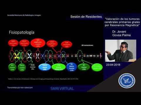 Pediatrics journal human papillomavirus vaccine