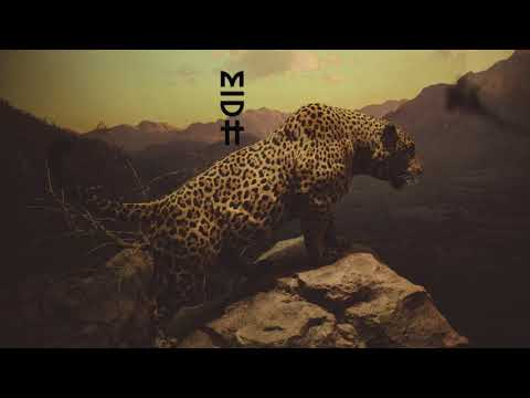 Afrokillerz - Bem Rayados