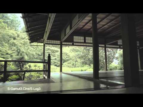 Фотоаппарат Sony ILCE-7SM2 body видео 3