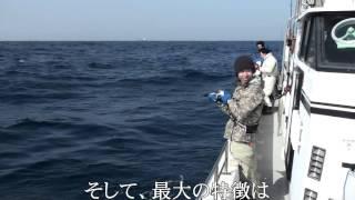 ELECTRIC JIGGING電動ジギングダブルヒット九州玄界灘