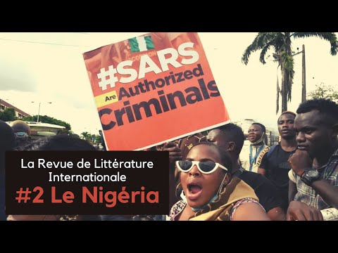 Vidéo de Chimamanda Ngozi Adichie