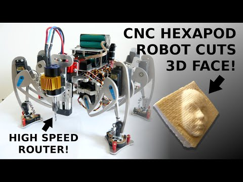 Hexapod Robot robi trójwymiarową twarz