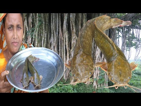 Traditional Bengali Cooking Magur Macher Bora Recipe Delicious Catfish Curry Village Food