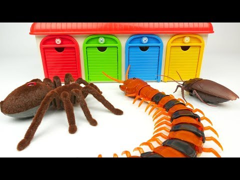 Tayo the little Bus & Deadpool - Gigante Insecto Juguete Monstruo | Gigantic Insect Toy Cars, Thomas