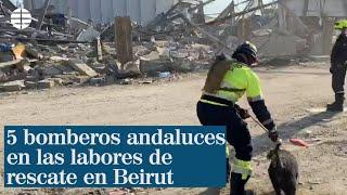 Varios bomberos andaluces viajan al epicentro de la explosión en Beirut para ayudar en los rescates