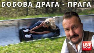 Бобова драга! Развлечение в Праге