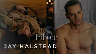 Jay Halstead - Unsteady