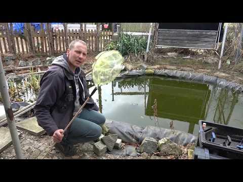 Garten und Teich Anfang März 2019