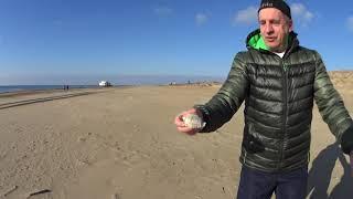 Бизнес под Ногами! Стоит ли зимой ехать на Черное море?