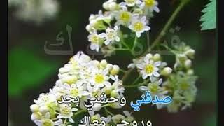 بحلم بلقاك ذكرى كاريوكي - موسيقى - لوك - كاريوكي عربي - تحميل MP3