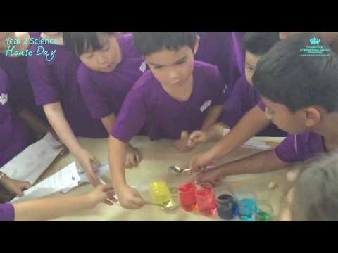 Year 2 Science House Day 2019
