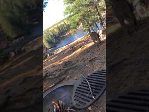 Video Of Trail's End Campground, MN