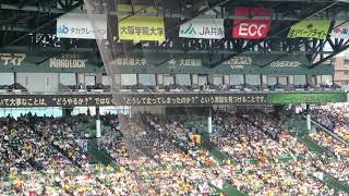 阪神甲子園球場ライナービジョンで紹介されました。