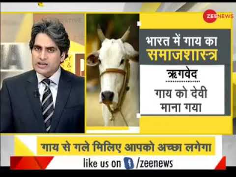 मन को शांत रखने के लिए मनोवैज्ञानिक नहीं, गाय के पास जाइए   Sudhir Chaudhary (Zee New))