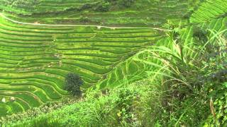 Video : China : The Ping'An 平安 rice terraces and GuiLin 桂林, GuangXi province