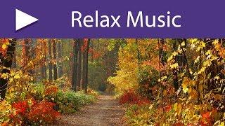 6 HOURS Nature Spa Music Relaxation, Healing Meditation, Yoga, Deep Sleep