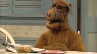 ALF best moment :D Willy, Willy, Willy