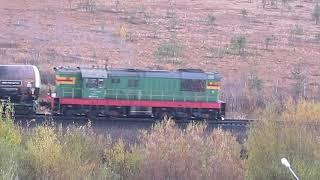 Тепловоз ЧМЭ3-1976 с грузовым составом выезжает из Архангельска