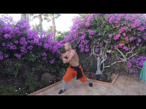 Shaolin Monk Traditional Power Workout - YouTube
