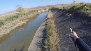 Рыбалка на даде ставропольский край