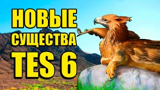 Новые существа THE ELDER SCROLLS 6 - ГРИФФОН в TES 6